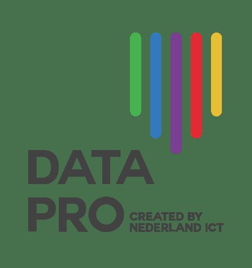 Data Pro logo